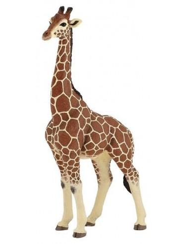 Figurine girafe mâle - Papo