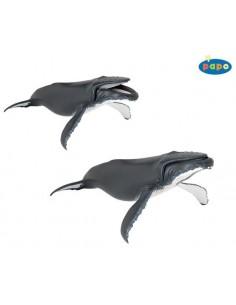 Figurine baleine à bosse- Papo