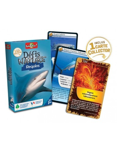 Défis nature requins - Bioviva