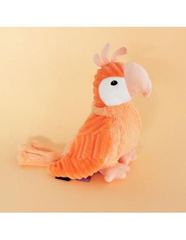 Répétou le perroquet - Les Ptipotos...