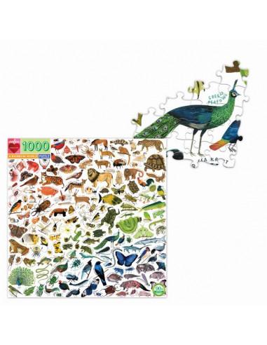 Puzzle A rainbow world 1000 pièces -...