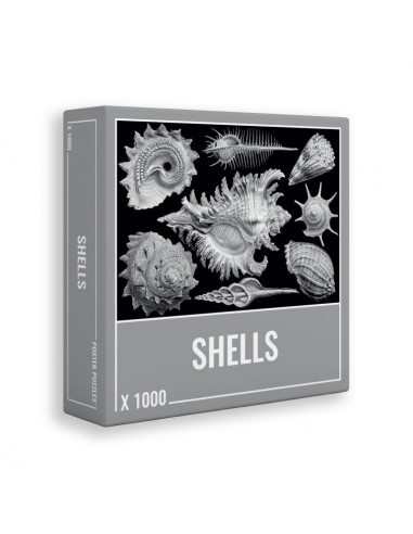 Puzzle coquillages Shells 1000 pièces...