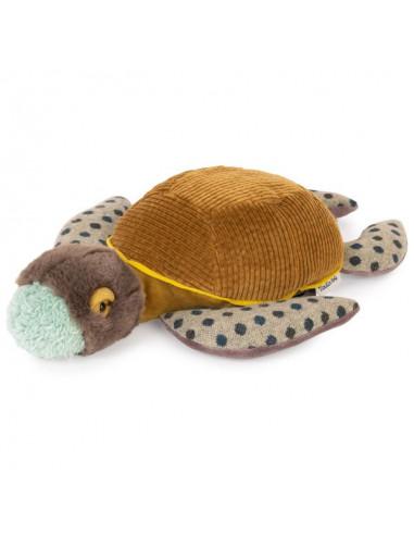 Petite tortue Tout autour du monde -...