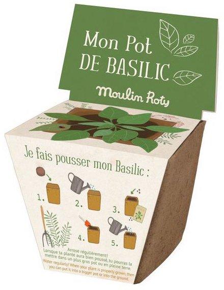 Pot pour faire pousser du basilic pour enfant