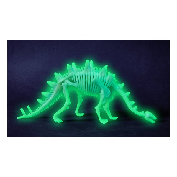 squelette de stégosaure à assembler terra kids