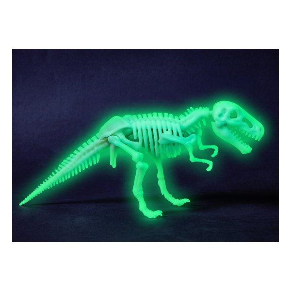 squelette de T-Rex à assembler terra kids