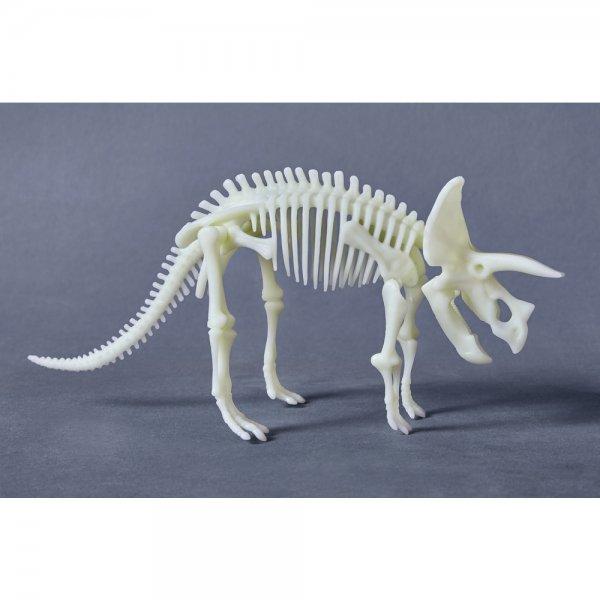 squelette de tricératops à assembler terra kids